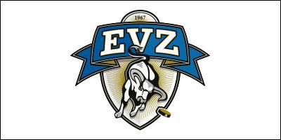 Sponsoring EVZ